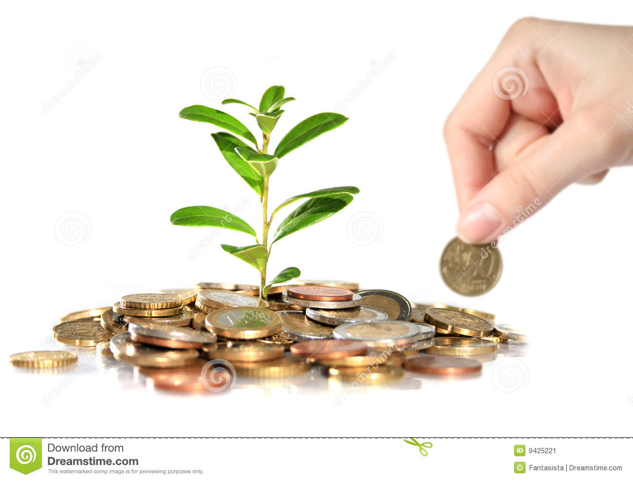Money and plant.