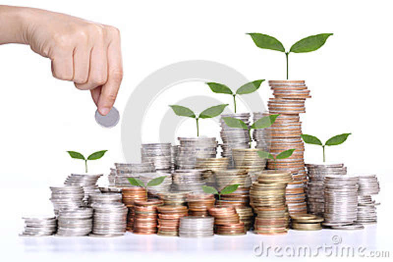 Money saving concept with coin stack and tree growing concept