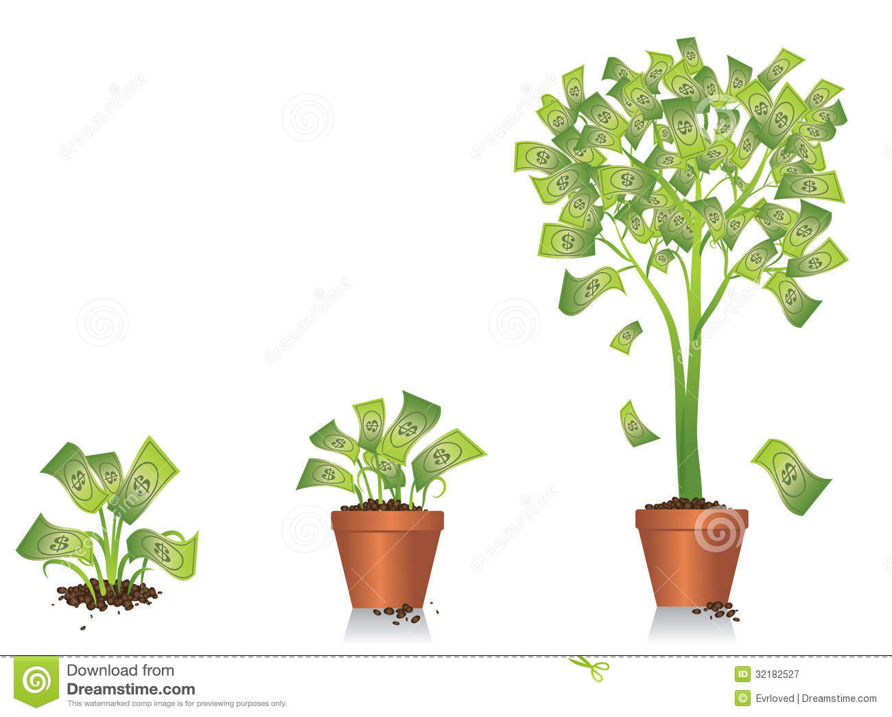 Best Indoor Plants For Clean Air Money Tree Growing Royalty Free Stock Photography Image