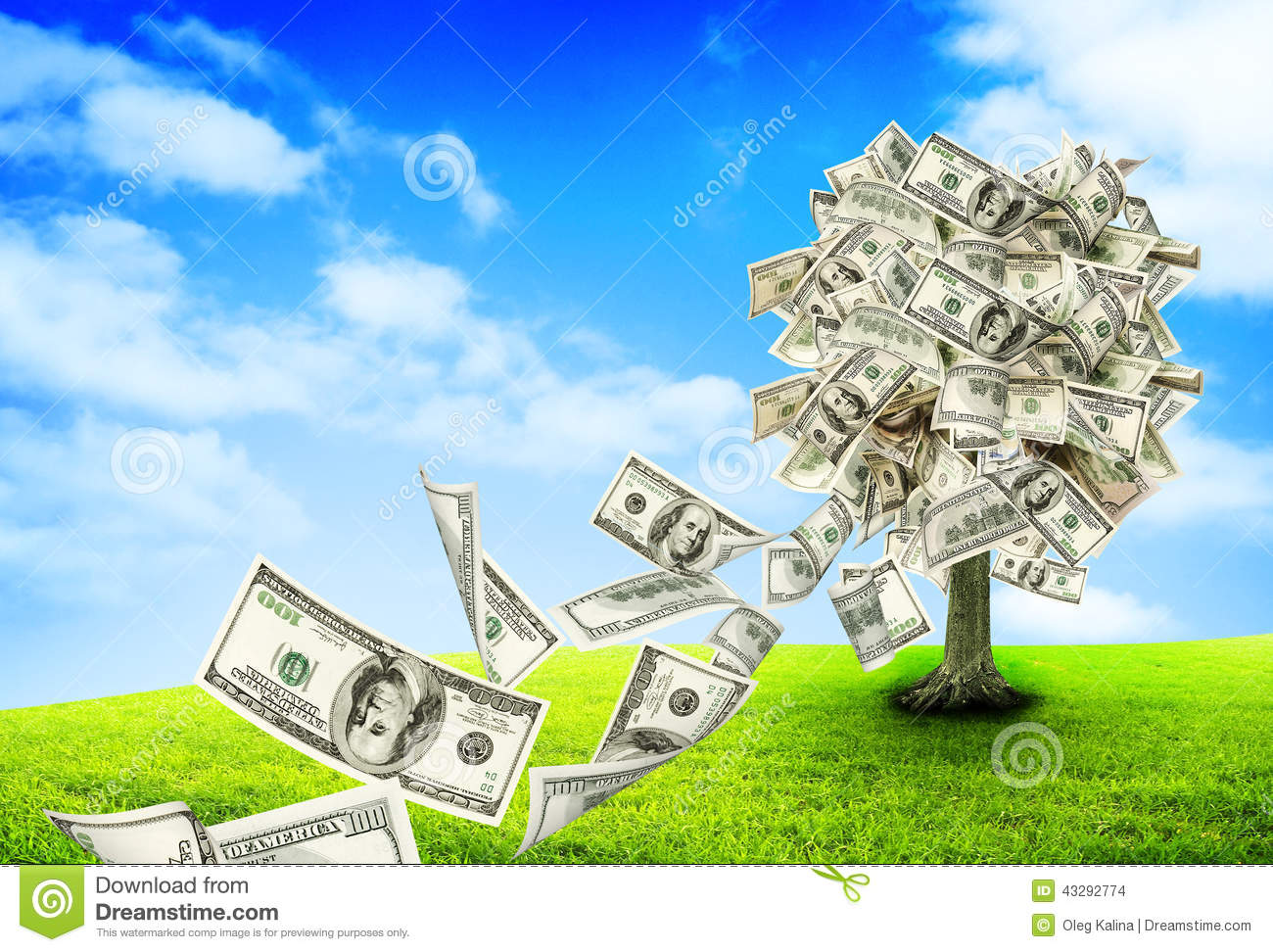 36 842 Money Tree Photos Free Royalty Free Stock Photos From Dreamstime