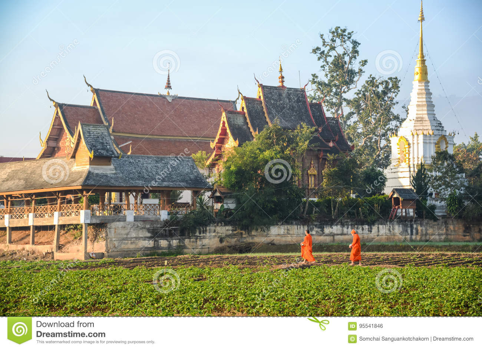 Monges budistas que obtêm o templo traseiro