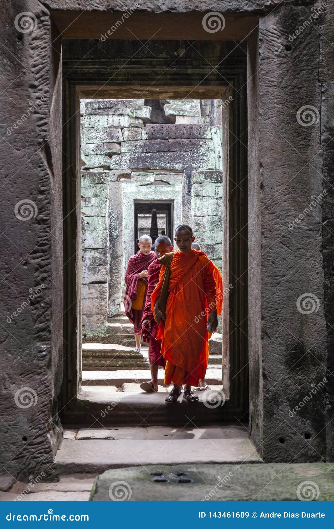 Monges budistas que passam através de um corredor de pedra do templo