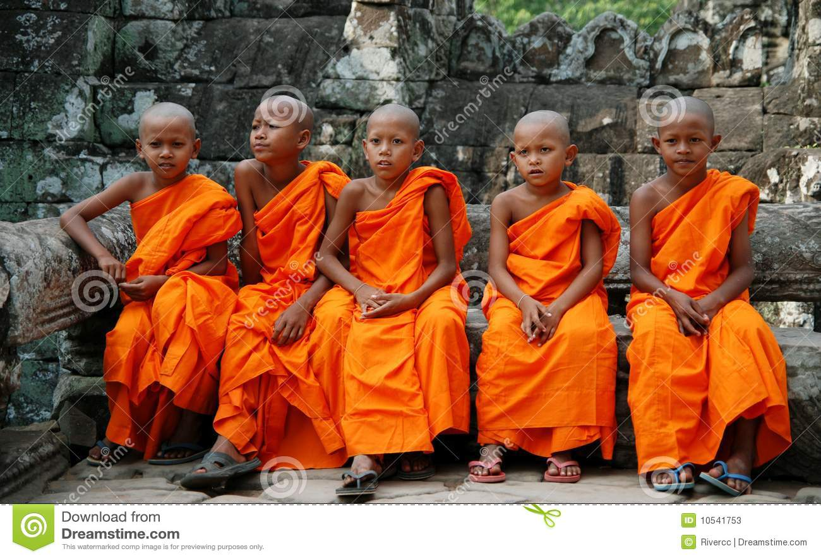 Monges pequenas em Cambodia