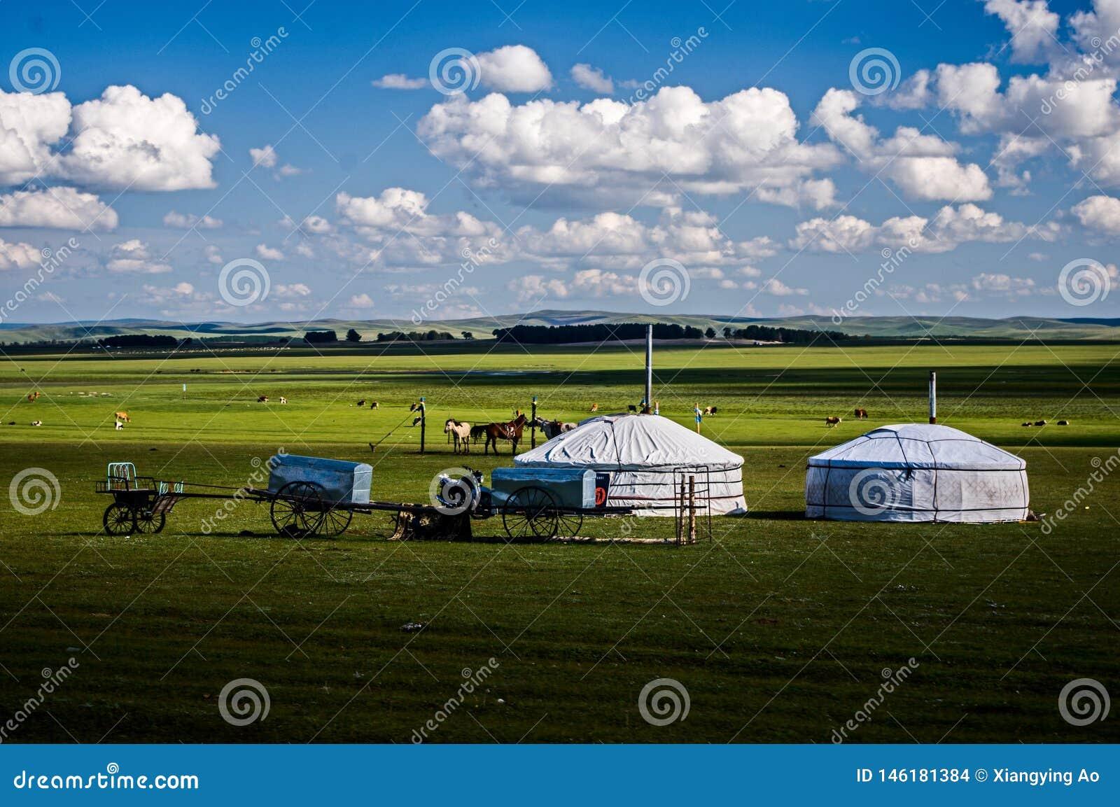 Mongolscy namioty na prerii