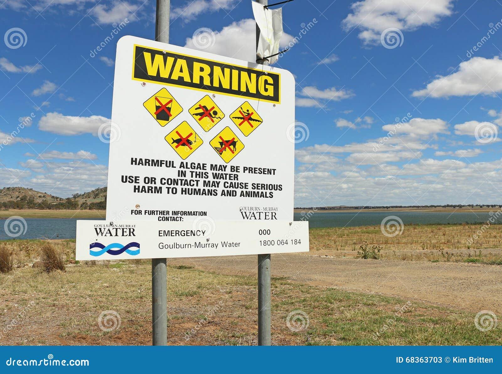 A monitoração no monte de pedras Curran Reservoir detectou níveis elevados de algas azul esverdeado O público foi advertido evita