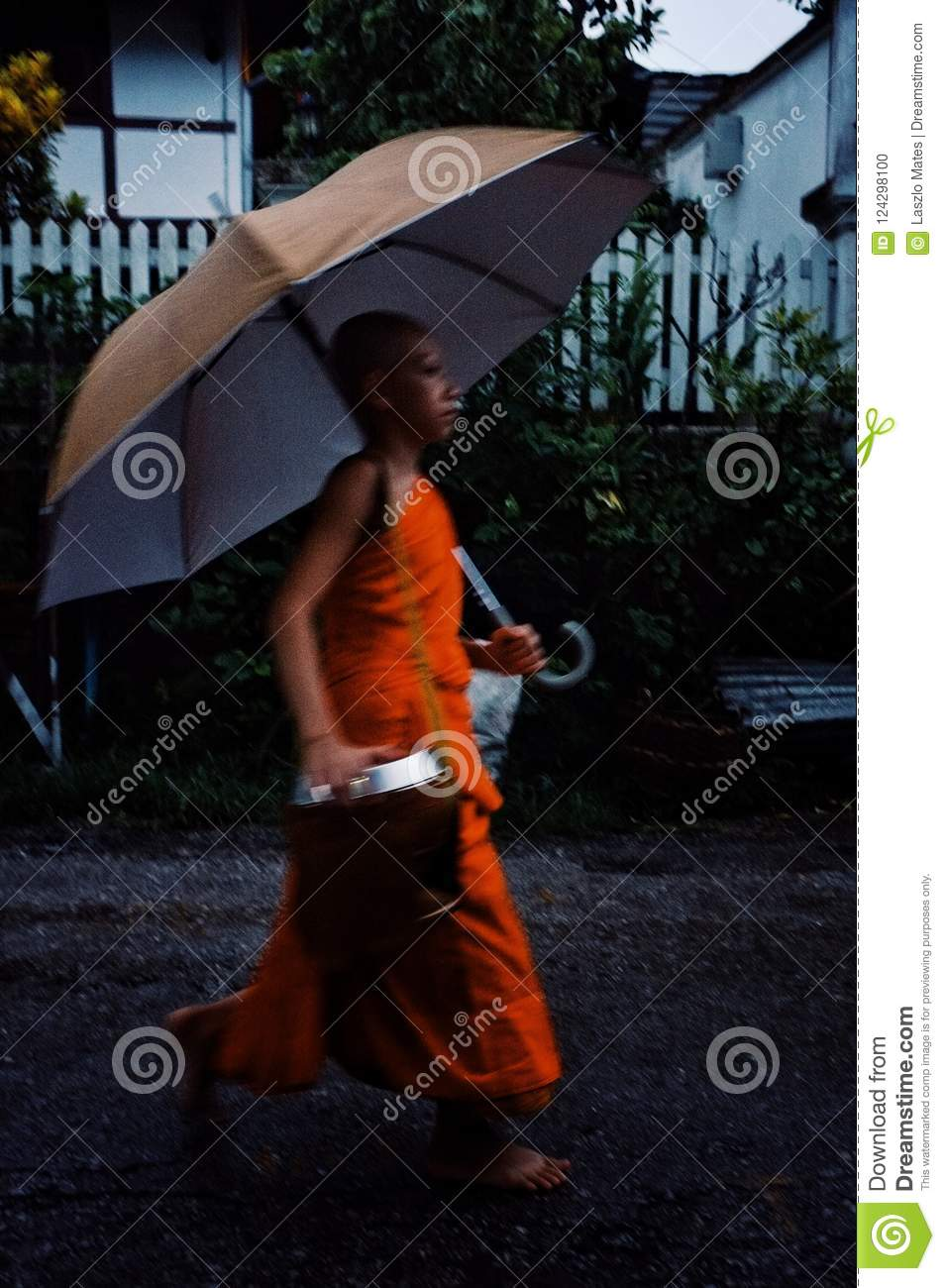 Monk during their early morning round around the town to collect their alms with umbrella