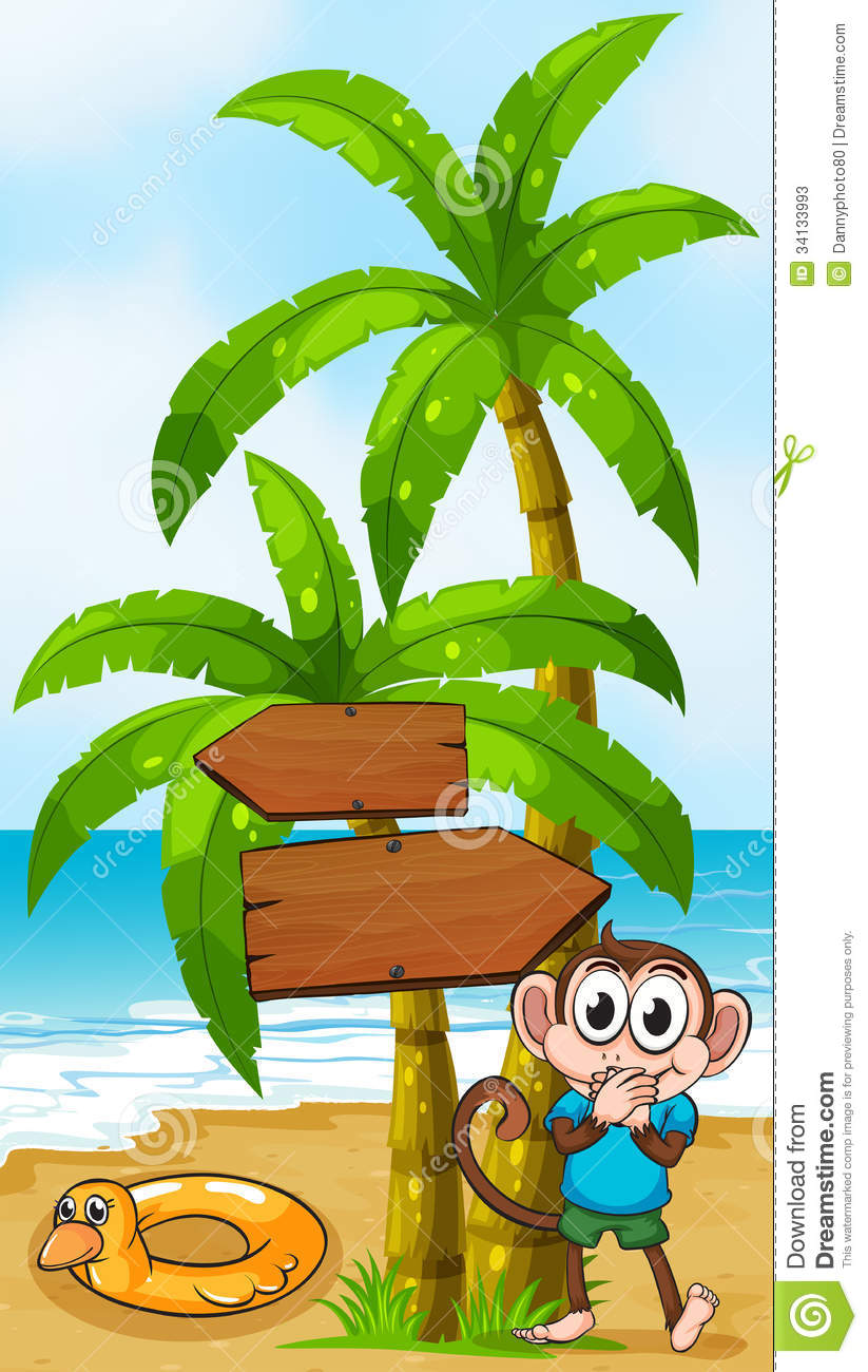 a monkey at the beach with a toy standing near the palm