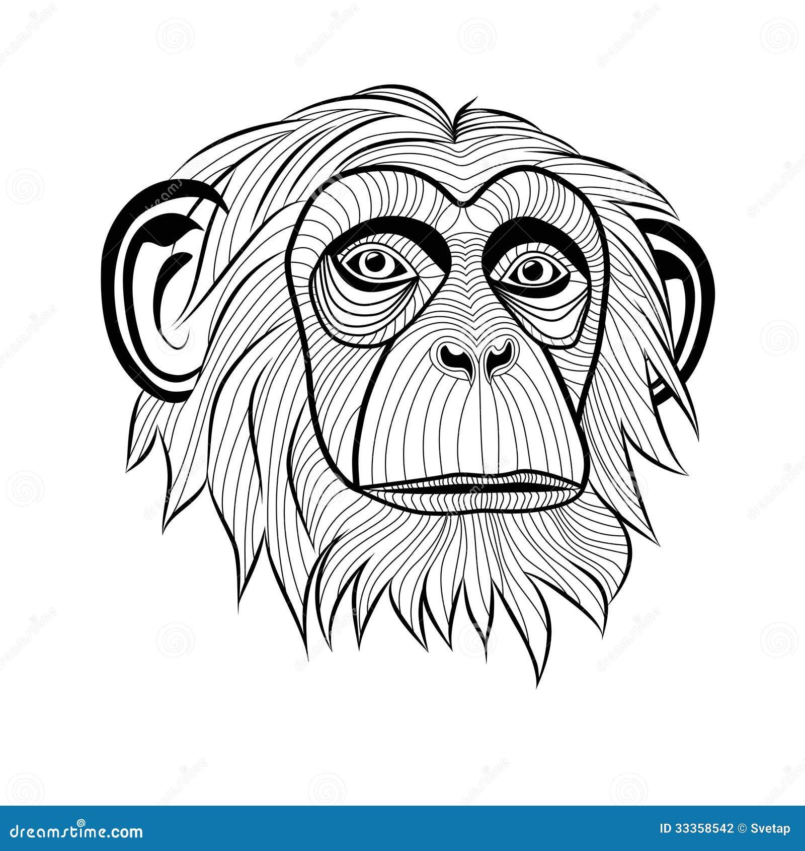 Monkey Chimpanzee Head Stock Photography Image 33358542