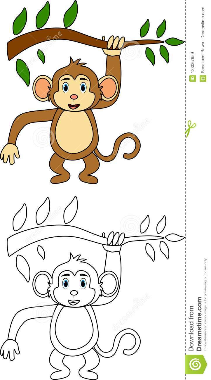 Monkey for coloring book