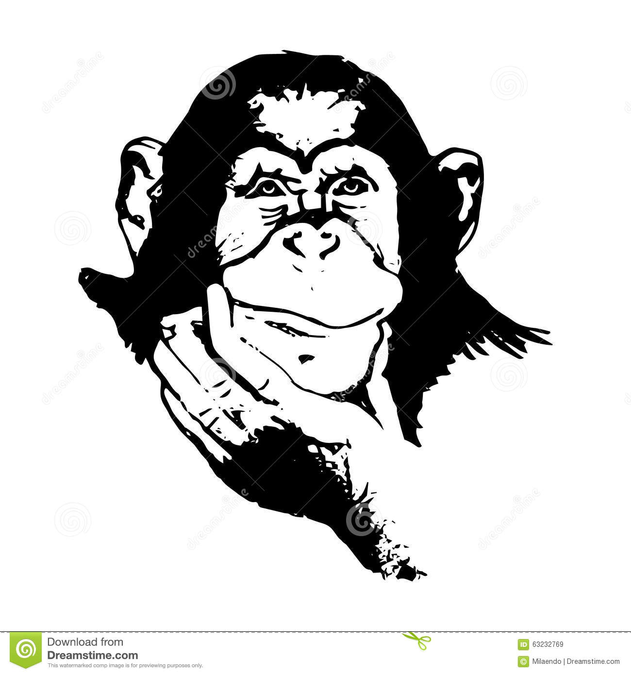 Line Drawing Vector Graphics : Monkey head graphics chimpanzees stock vector image