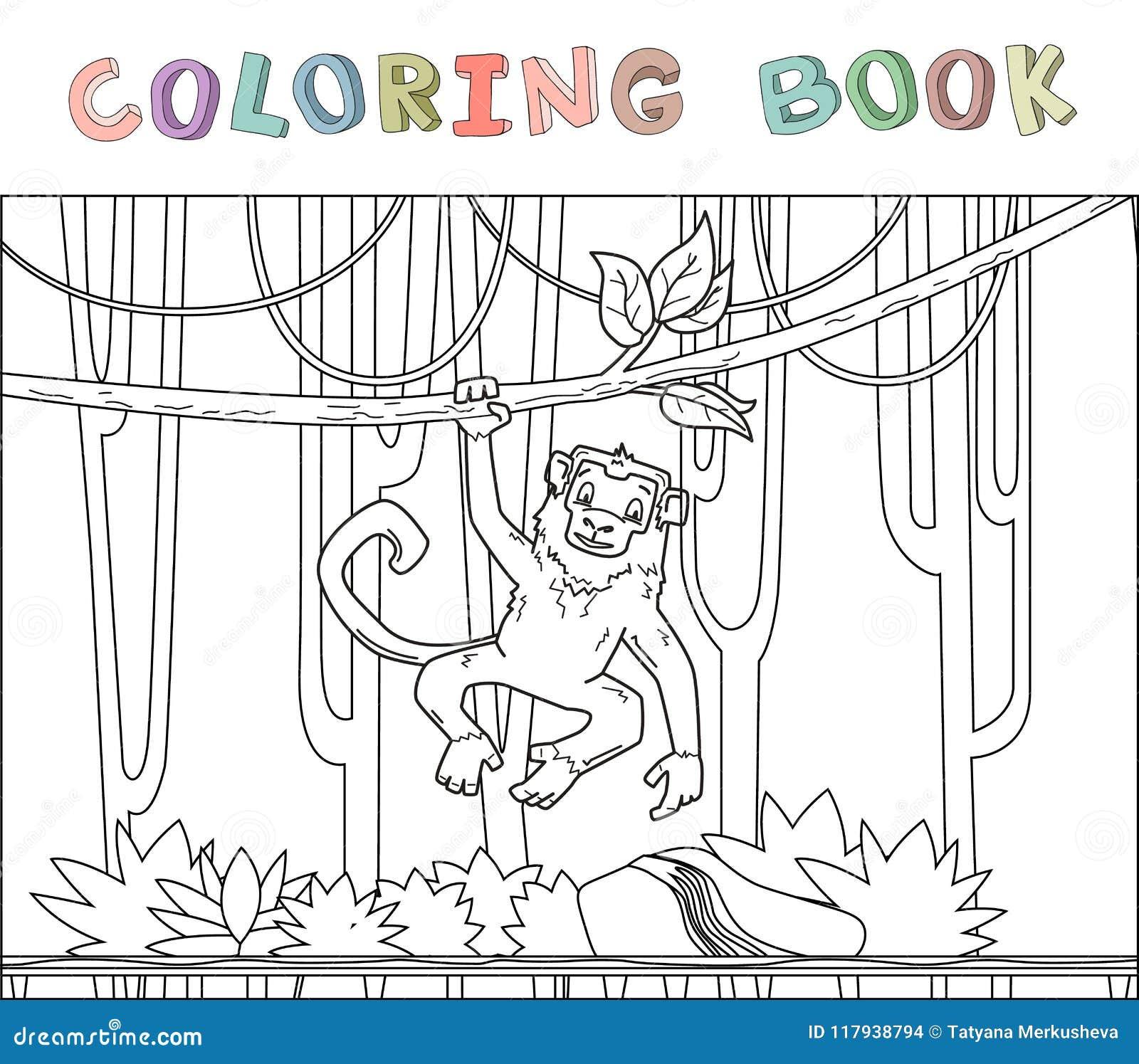 Dibujos Para Colorear De Animales De La Selva Tropical Dibujos De