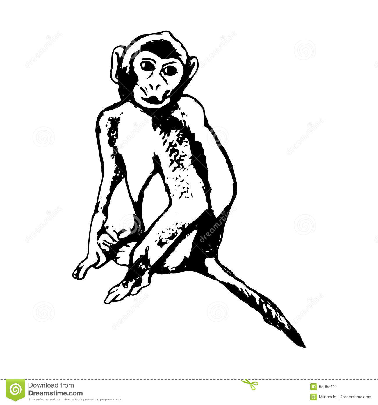 monkey sitting abstraction stock vector image 65055119