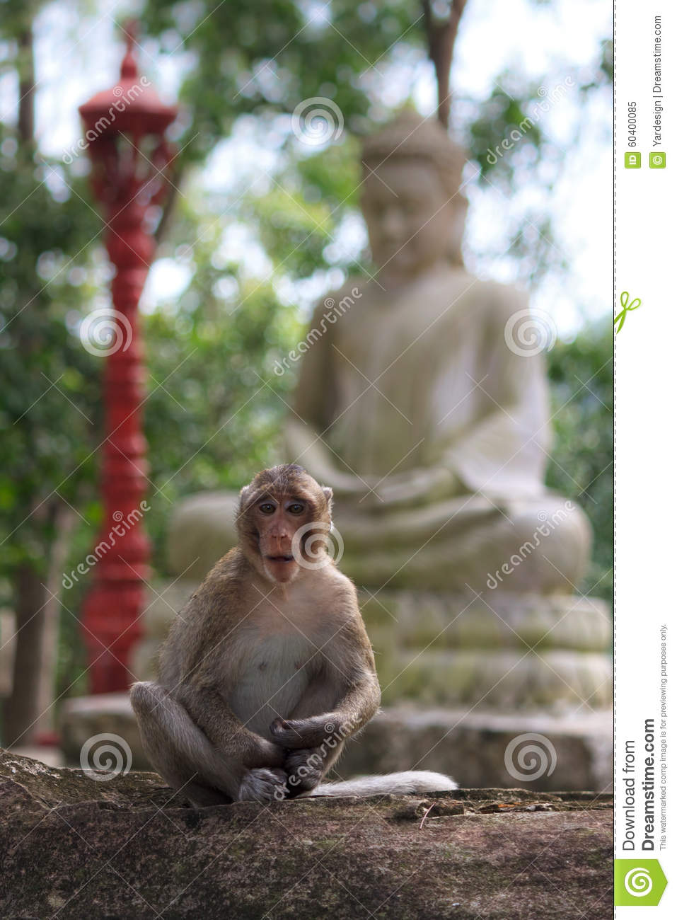 Monkey Sitting On Garden Stone With Statue Of Buddha At
