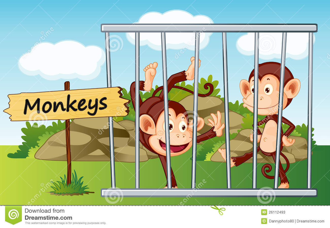 monkeys in cage stock photos image 26112493 monkey clip art t shirts monkey clipart black and white template