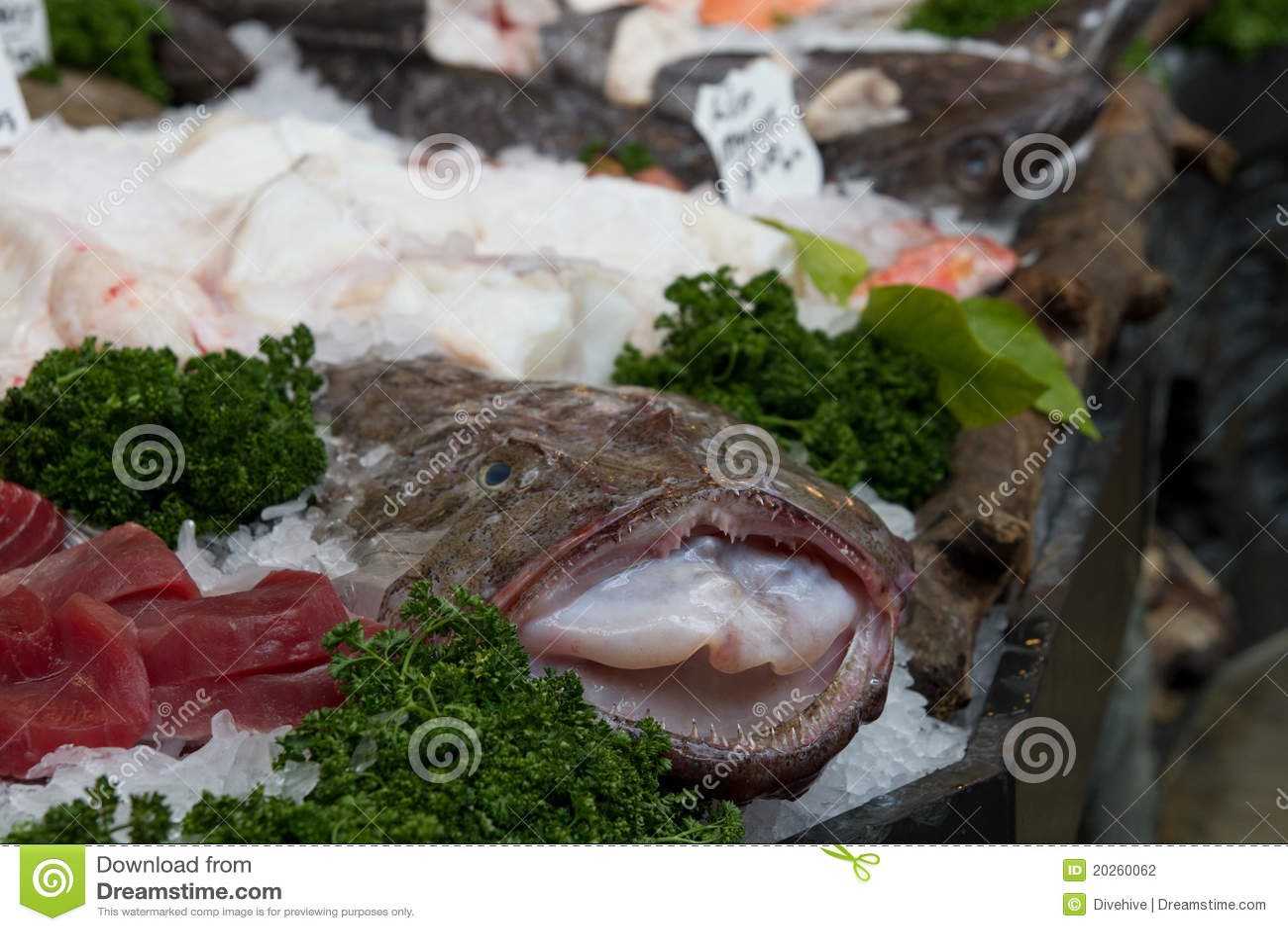 Monkfish at fishmarket