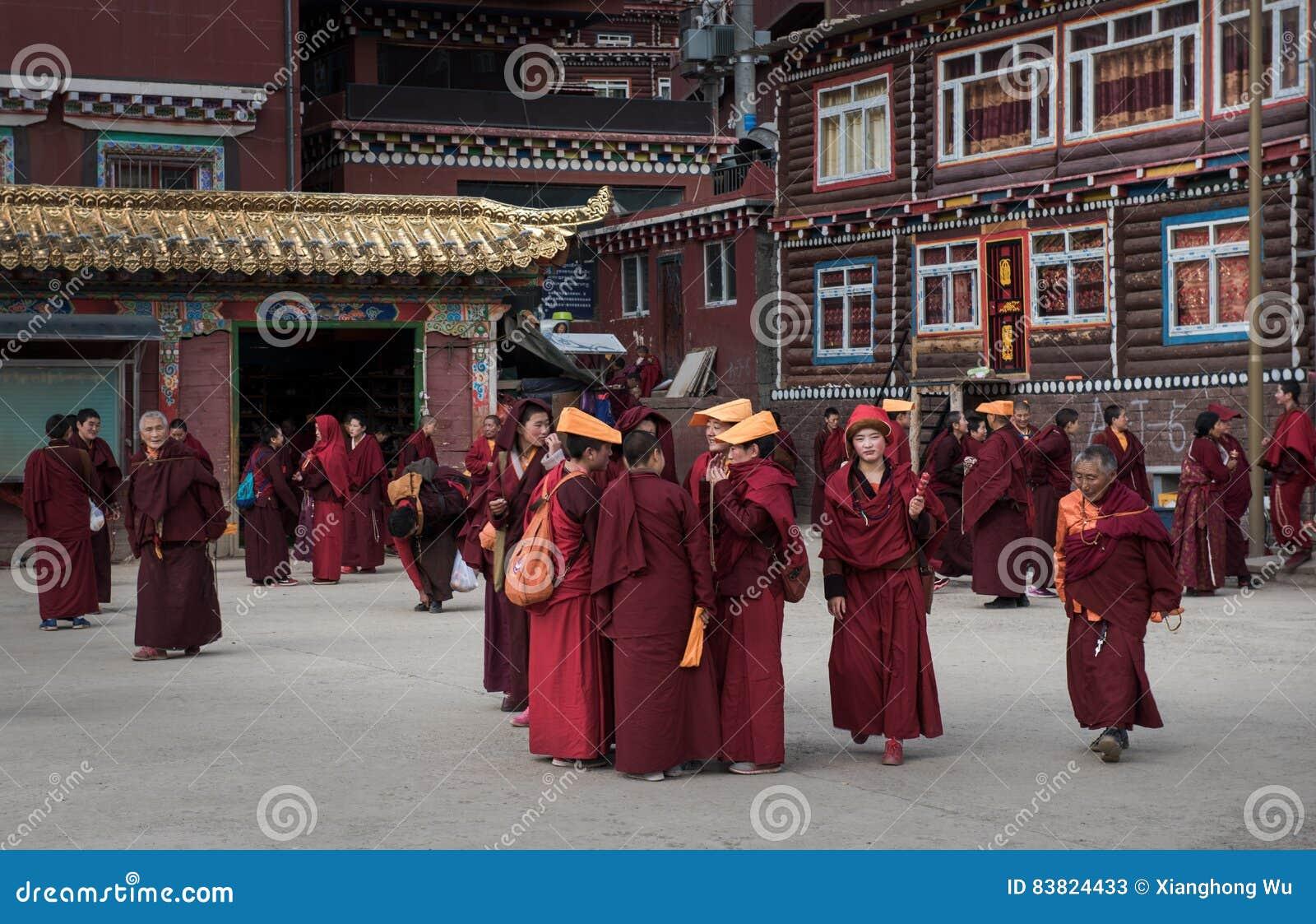 Monks of Seda Buddhist Academy