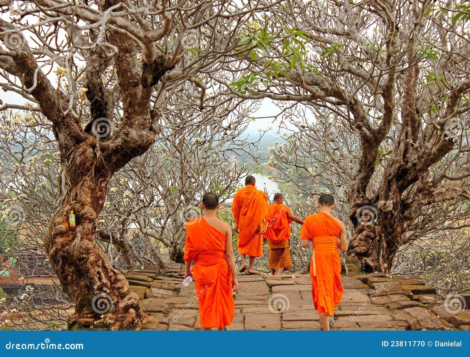 Monks at Wat Phu, Laos