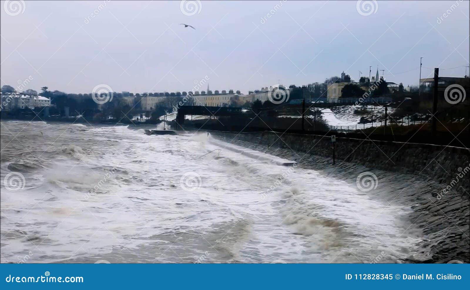 Monkstown - Dun Laoghaire emma storm Ståndsmässiga Dublin ireland stock video