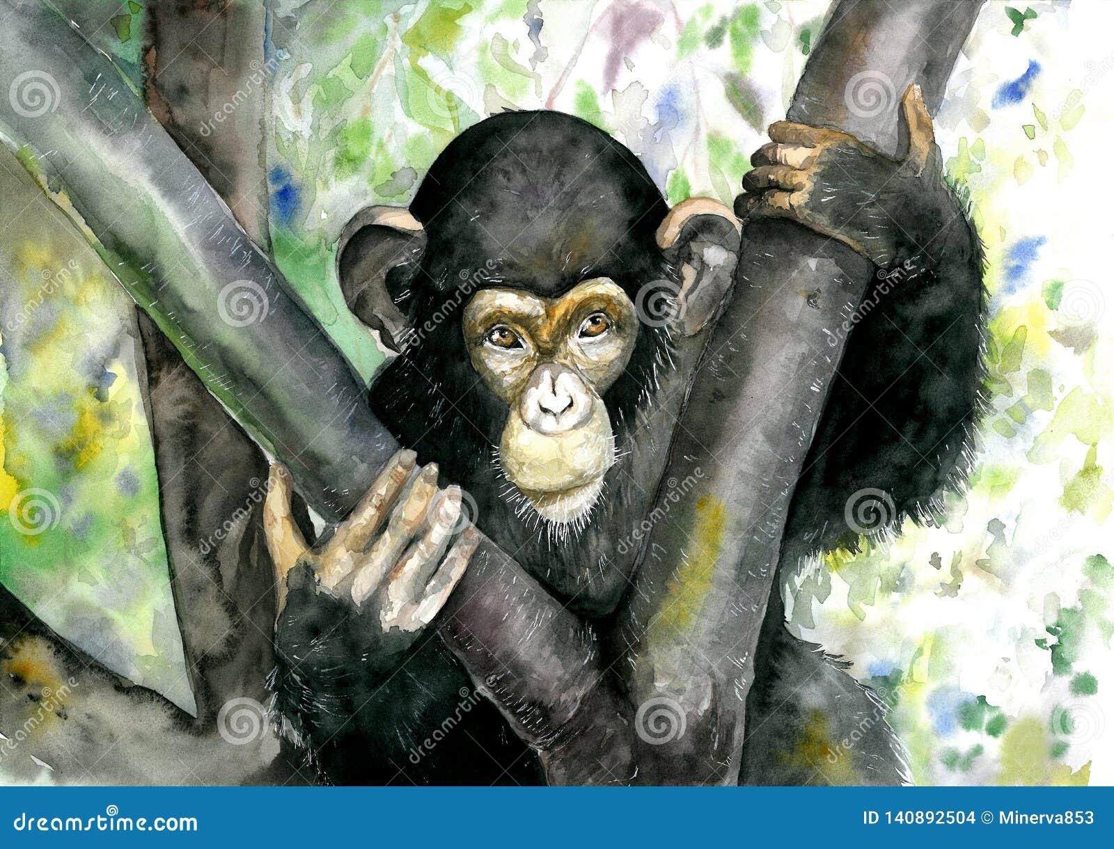 Mono negro que se sienta en un árbol Chimpancé Ilustración de la acuarela