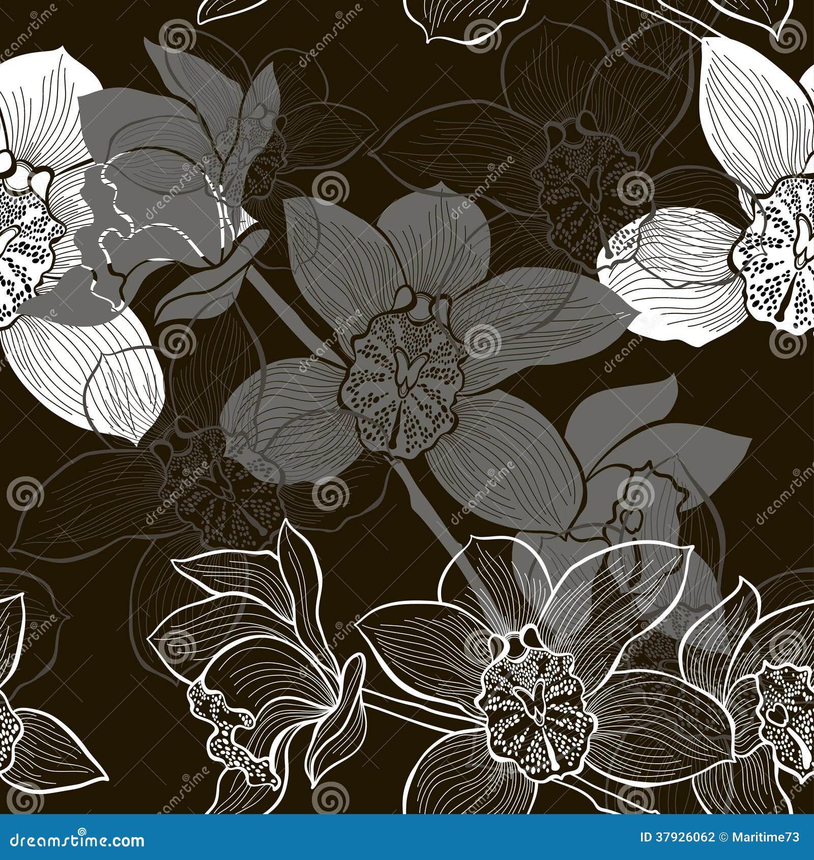 Monochrome безшовная предпосылка с орхидеями