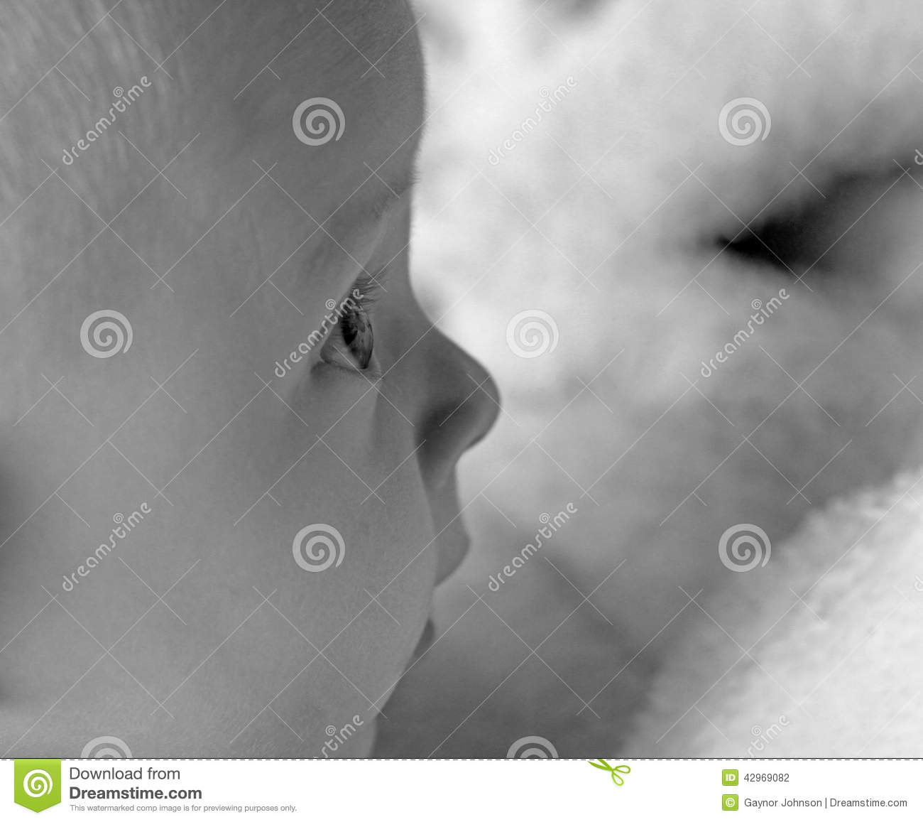 Monochrome baby side view abstract