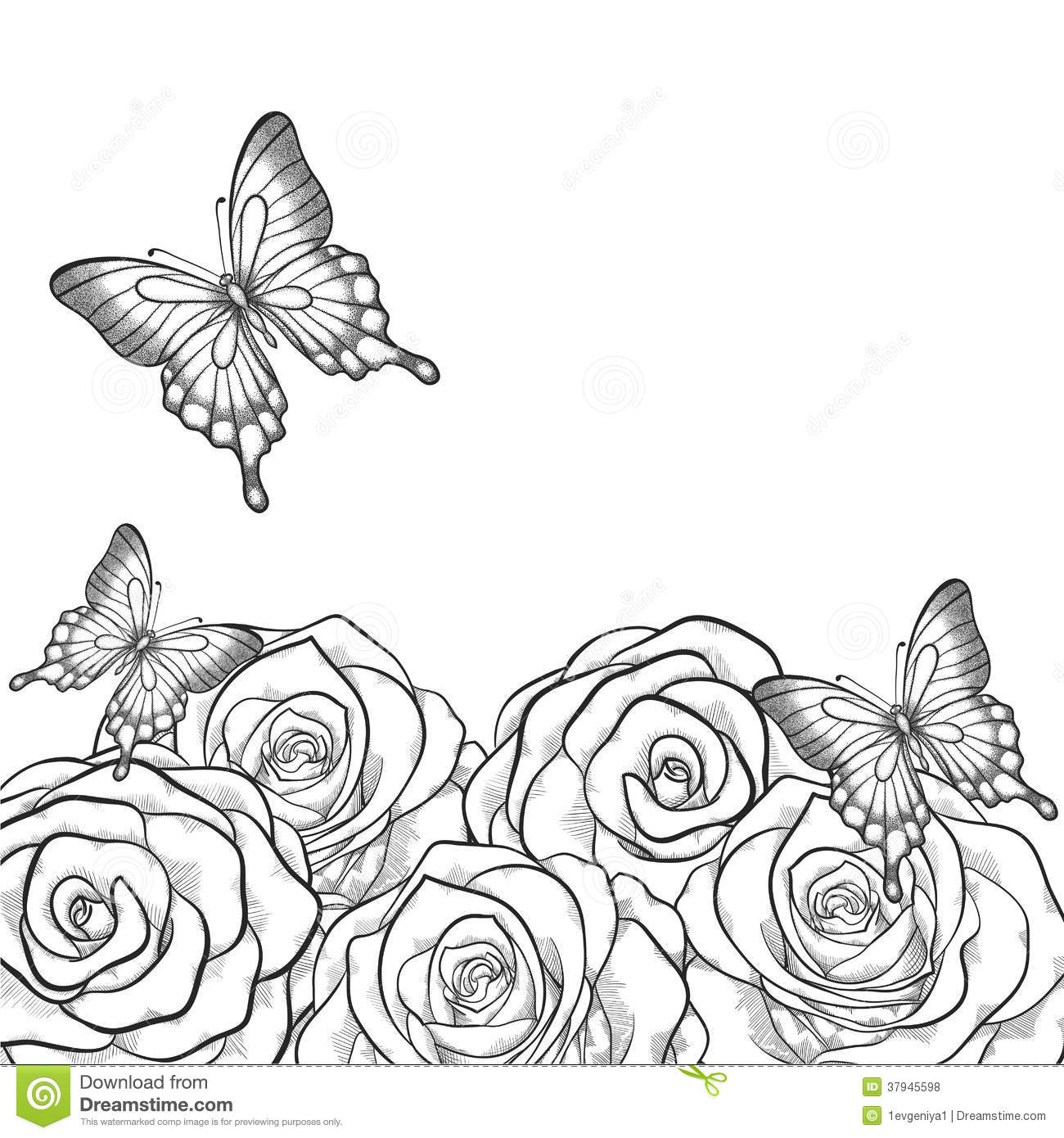 Contour Line Drawing Butterfly : Monochrome black and white card with flowers roses