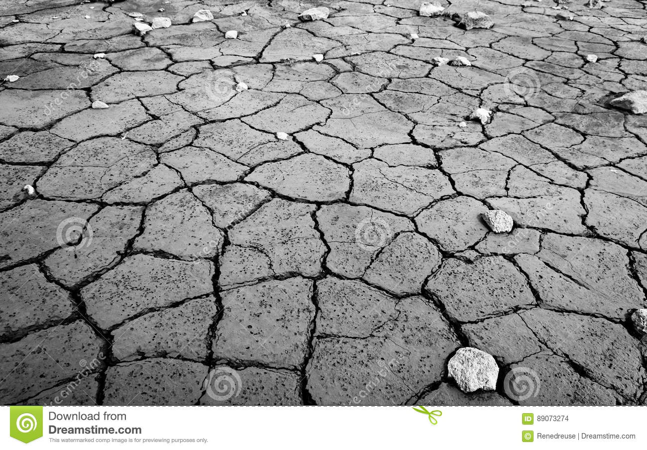 What do mud cracks result from