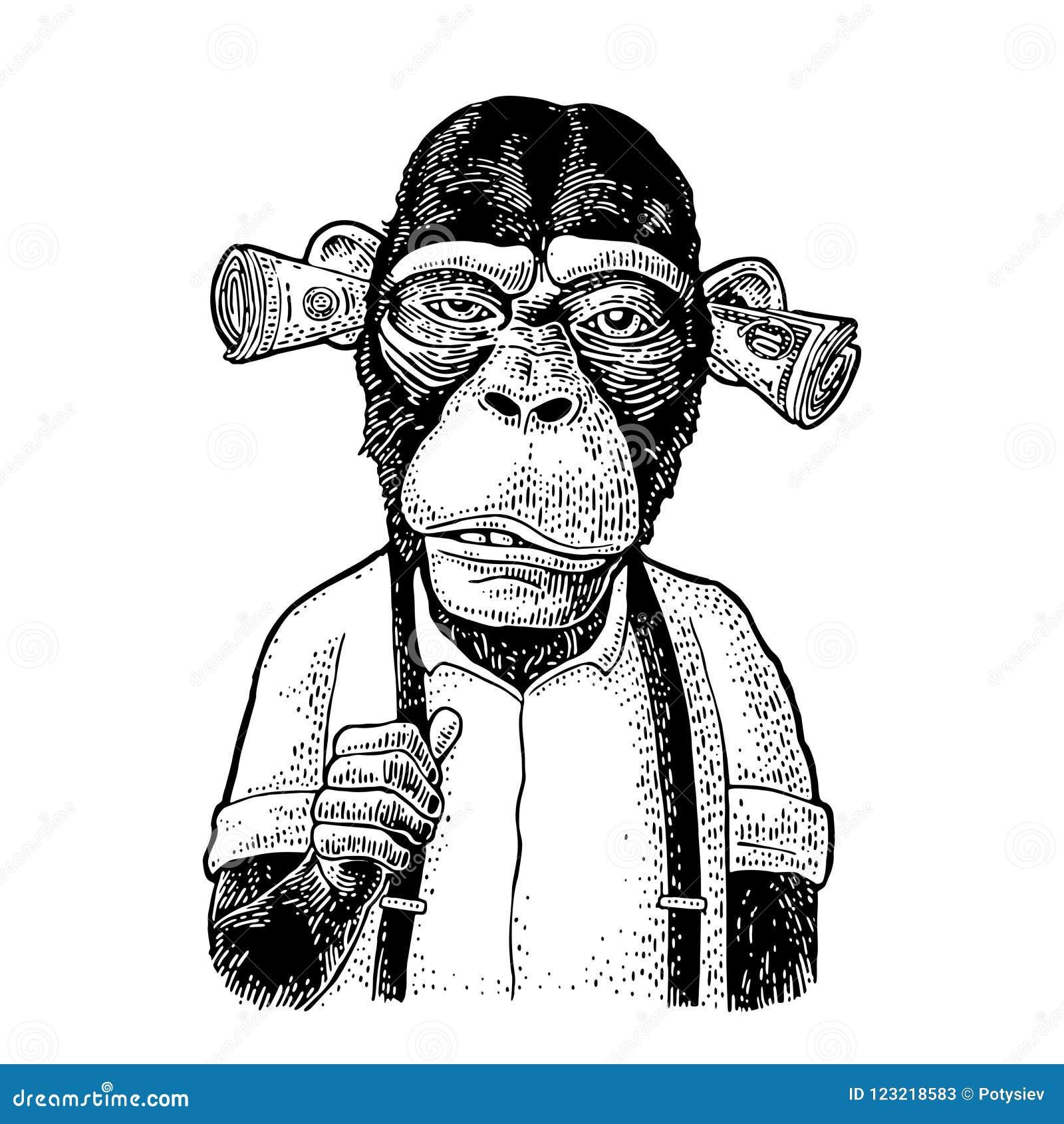 3 Monos Sabios Tatuajes monos con el dinero en los oídos grabado del vintage
