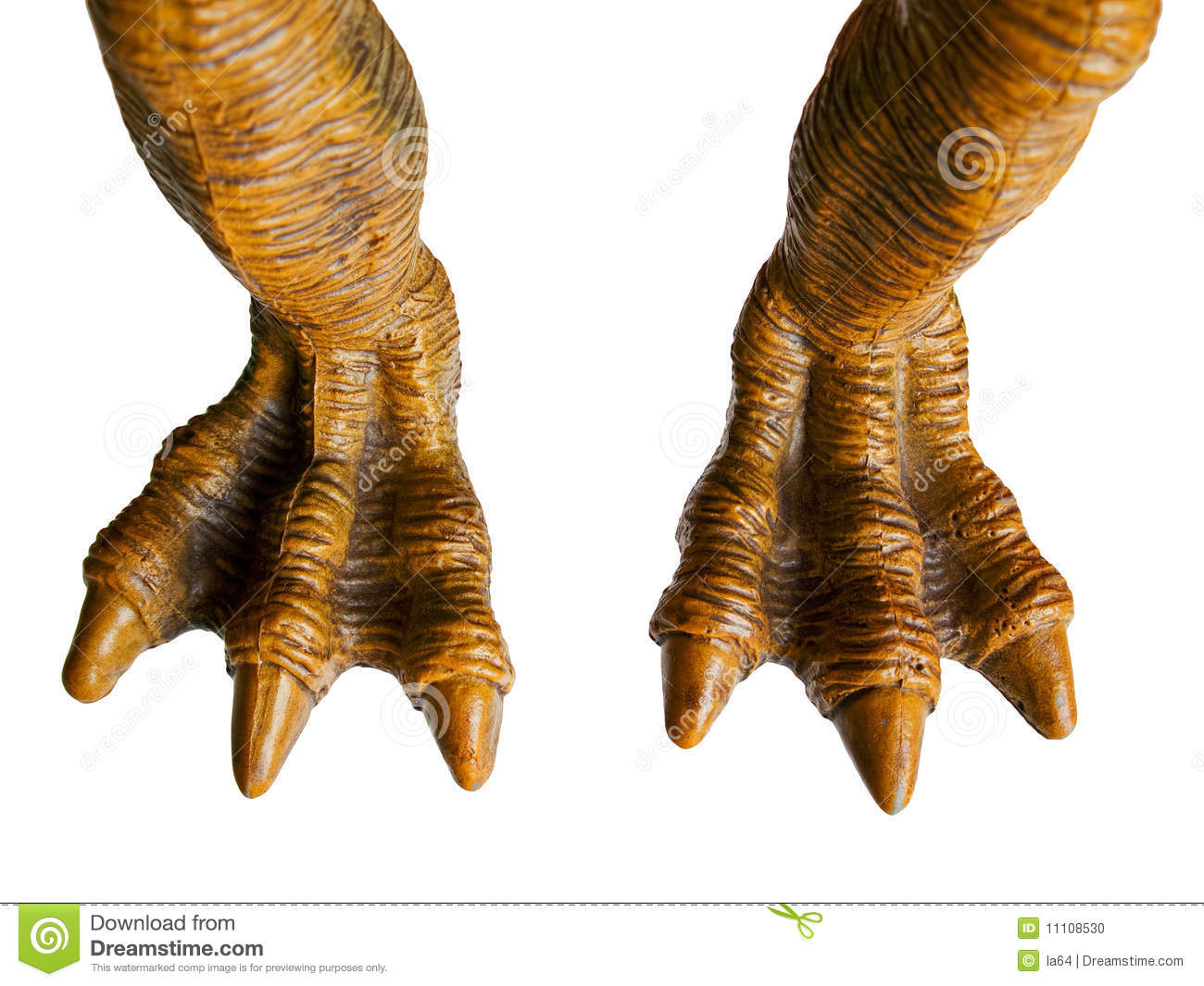 Monster toy or animal dinosaur spooky horror foot.