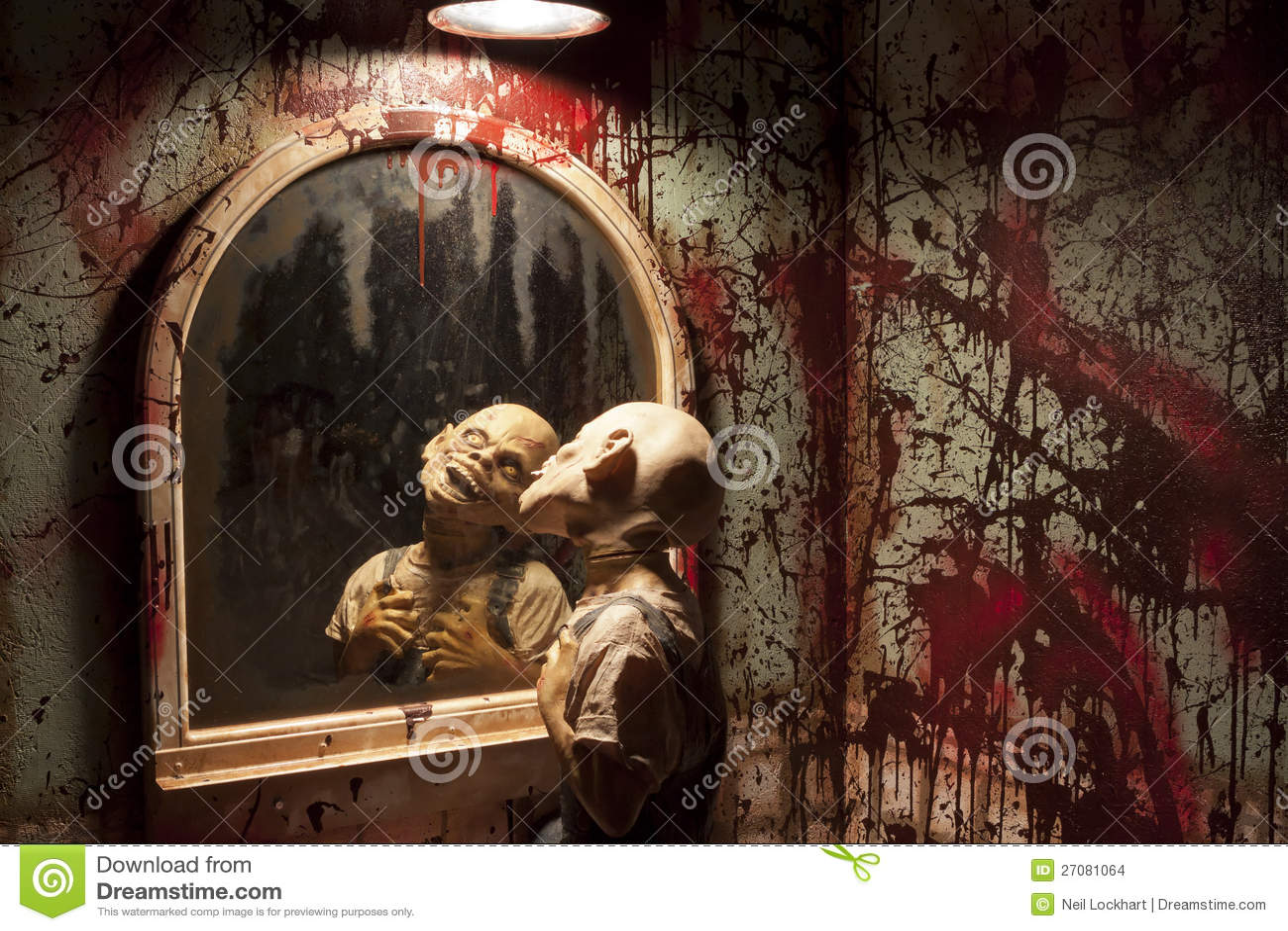 Monstre effrayant dans le miroir photo stock image 27081064 for Pics de chicks dans l miroir