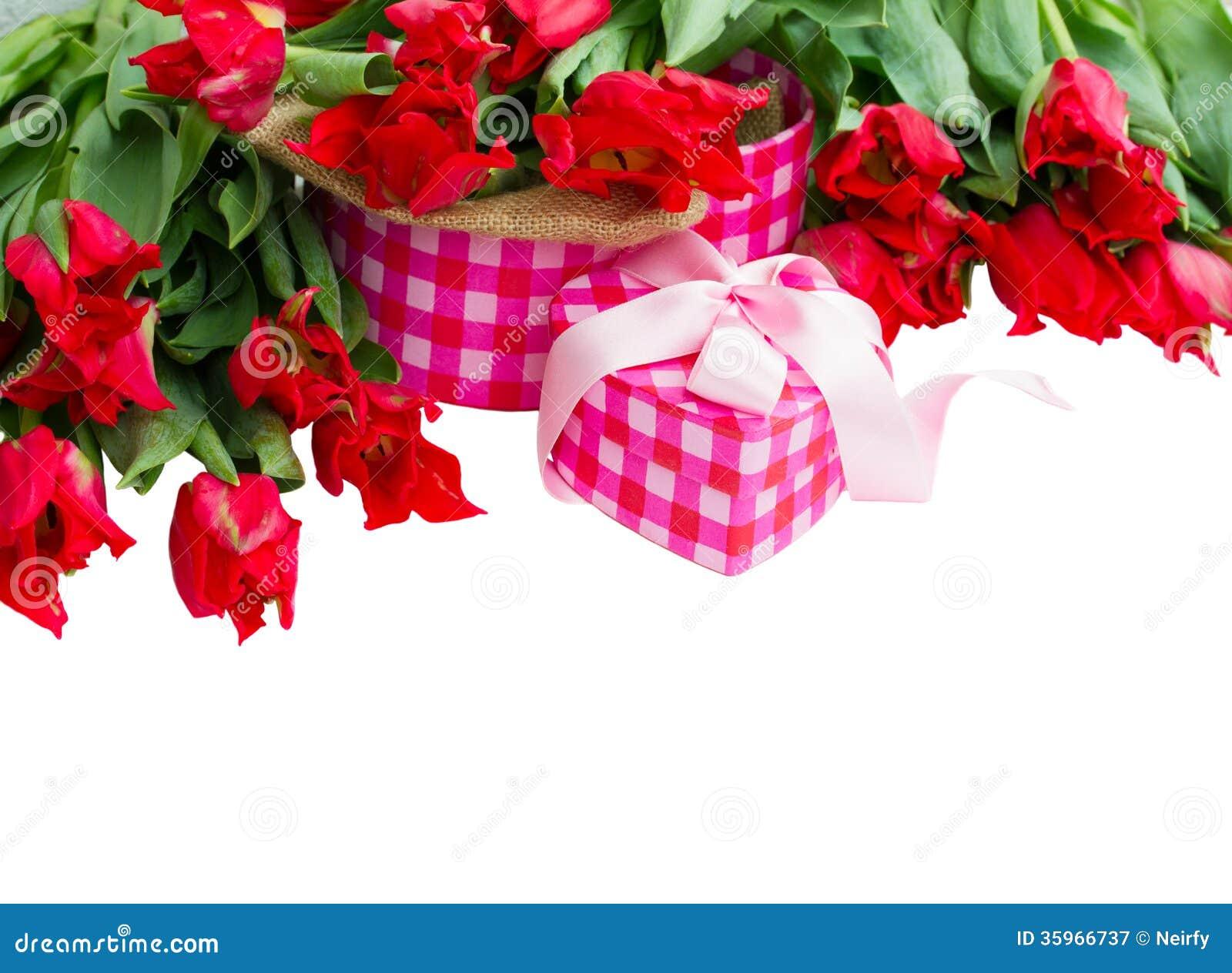 Montón de tulipanes rojos con la caja de regalo