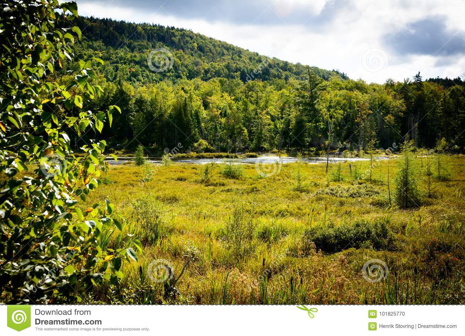 Mont-Tremblant nationalpark, Kanada - landskap med sjön
