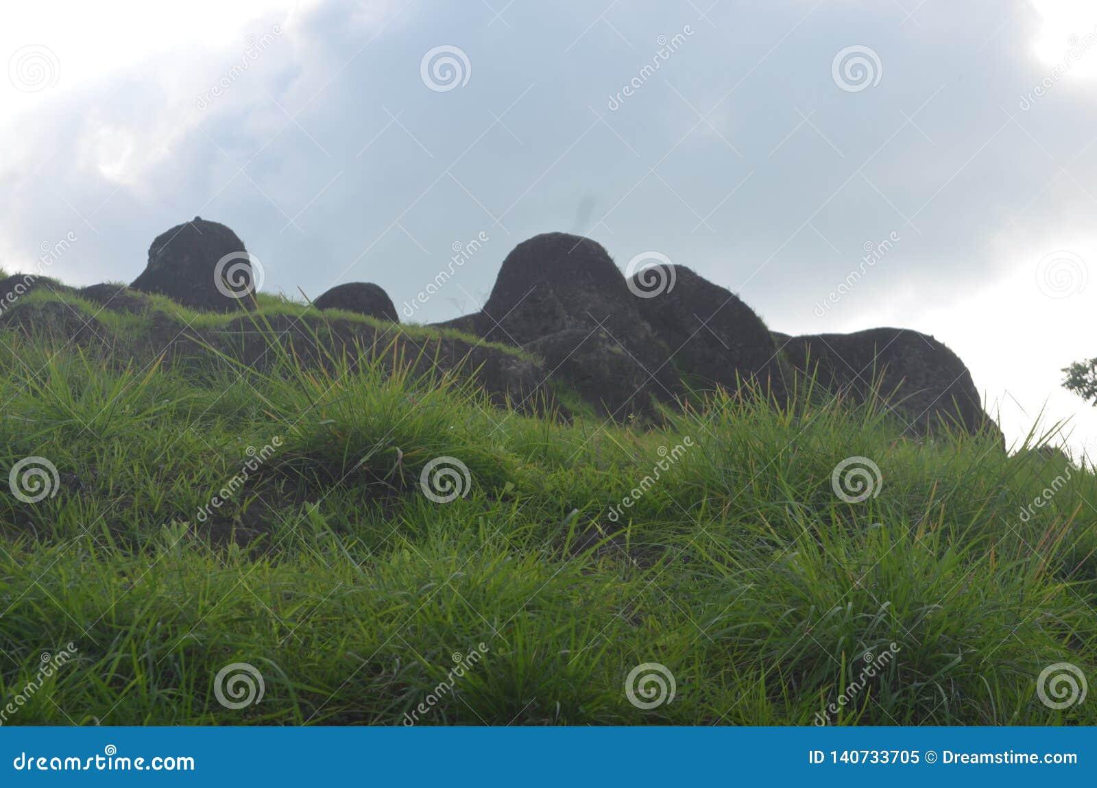 Montaña rocosa con mismo la hierba de verde alrededor de la isla de Dewata Bali