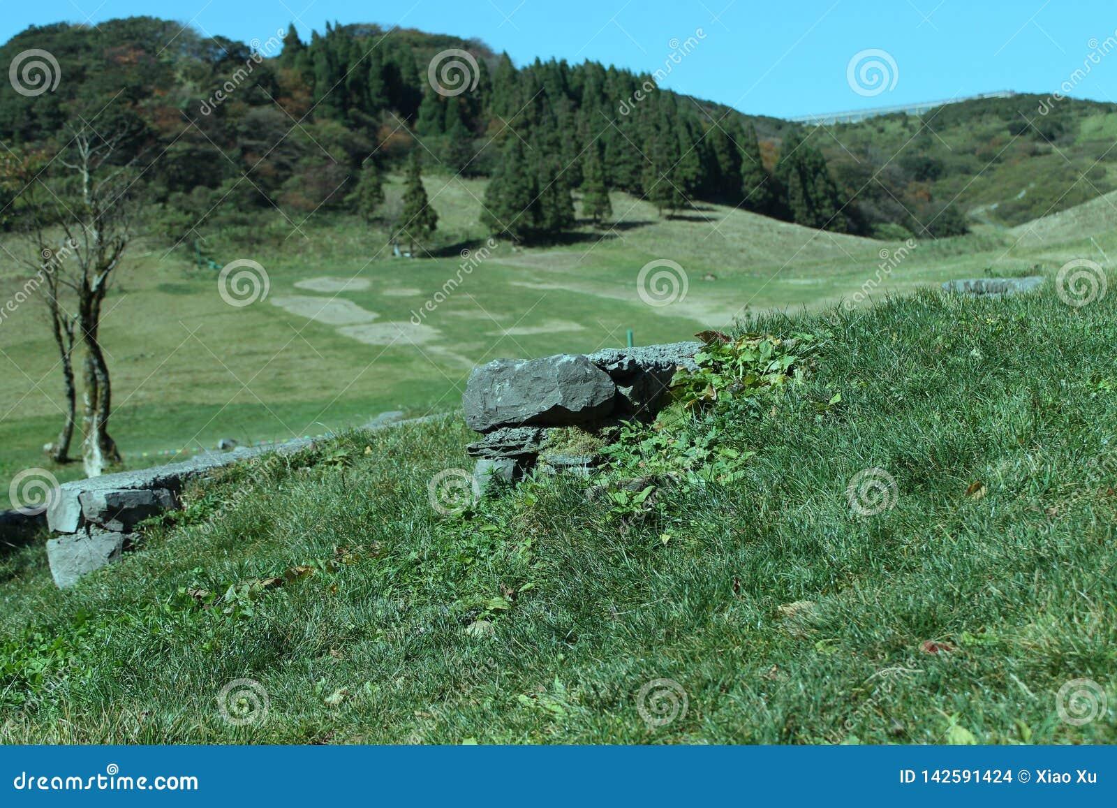 Montaña de Jinfo