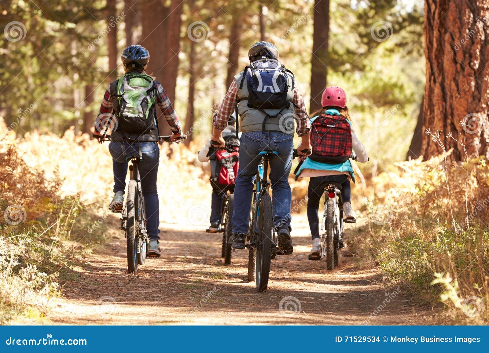 Montaña de la familia biking en el rastro del bosque, visión trasera