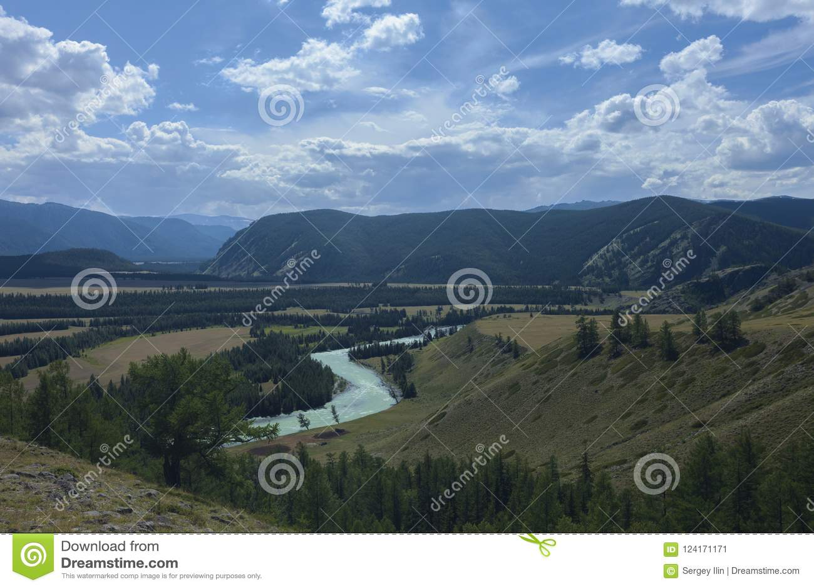 Montañas de Altai Río Argut Paisaje hermoso de la montaña russ
