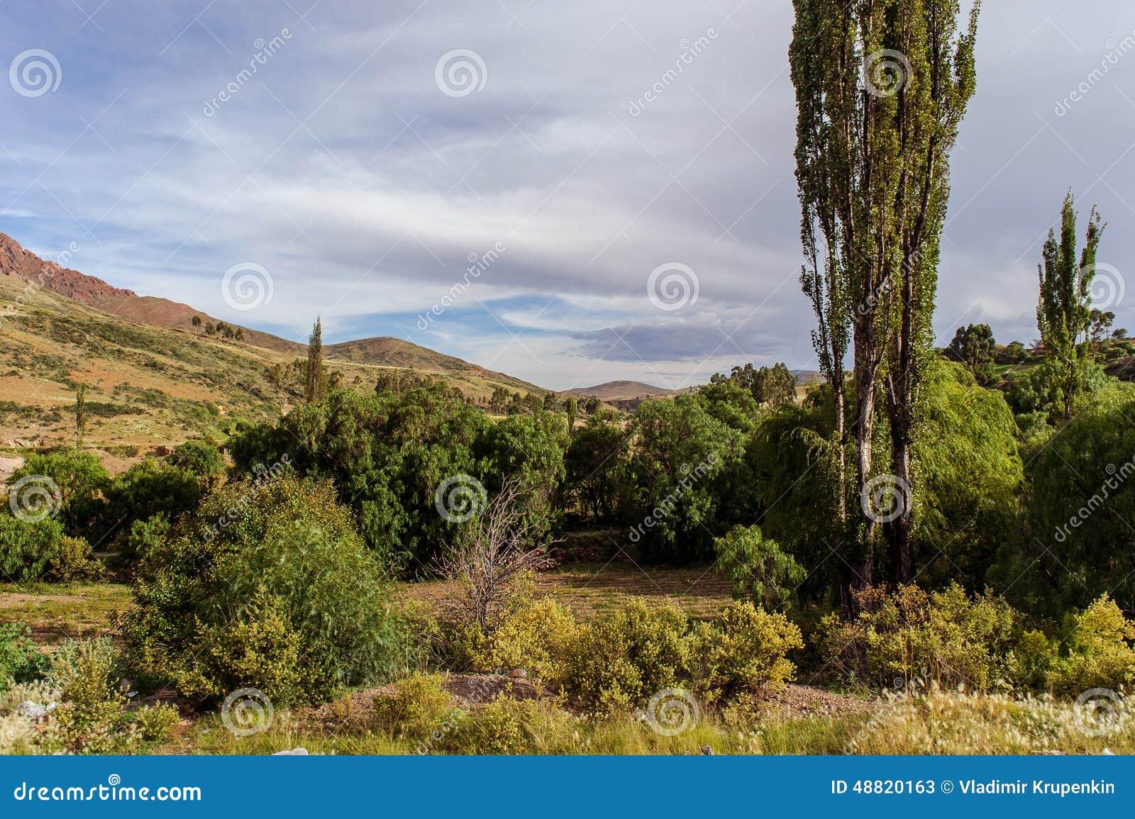 Montañas de Bolivia, altiplano