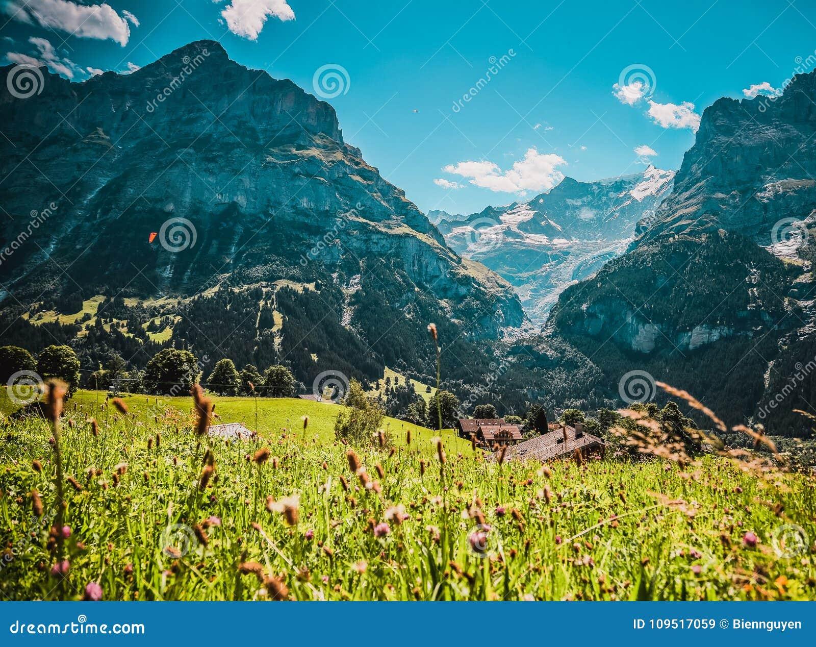 Montañas suizas en el verano