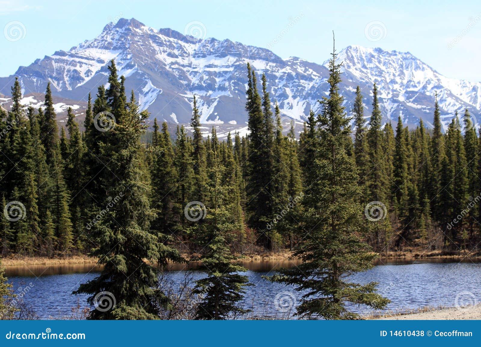 Montañas y charca