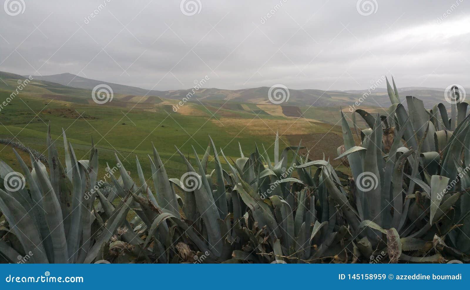 Montañas y fes de la región de la ciudad, Marruecos
