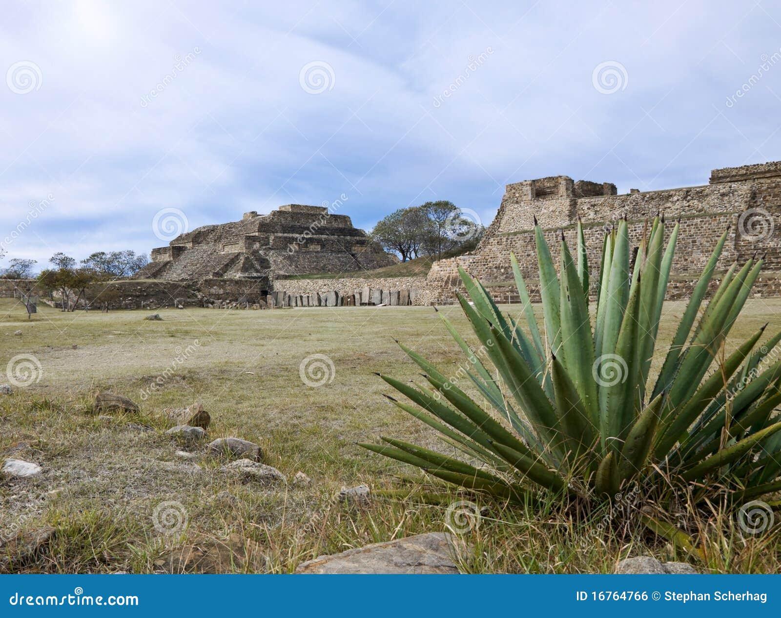 Monta Alban, Mexique