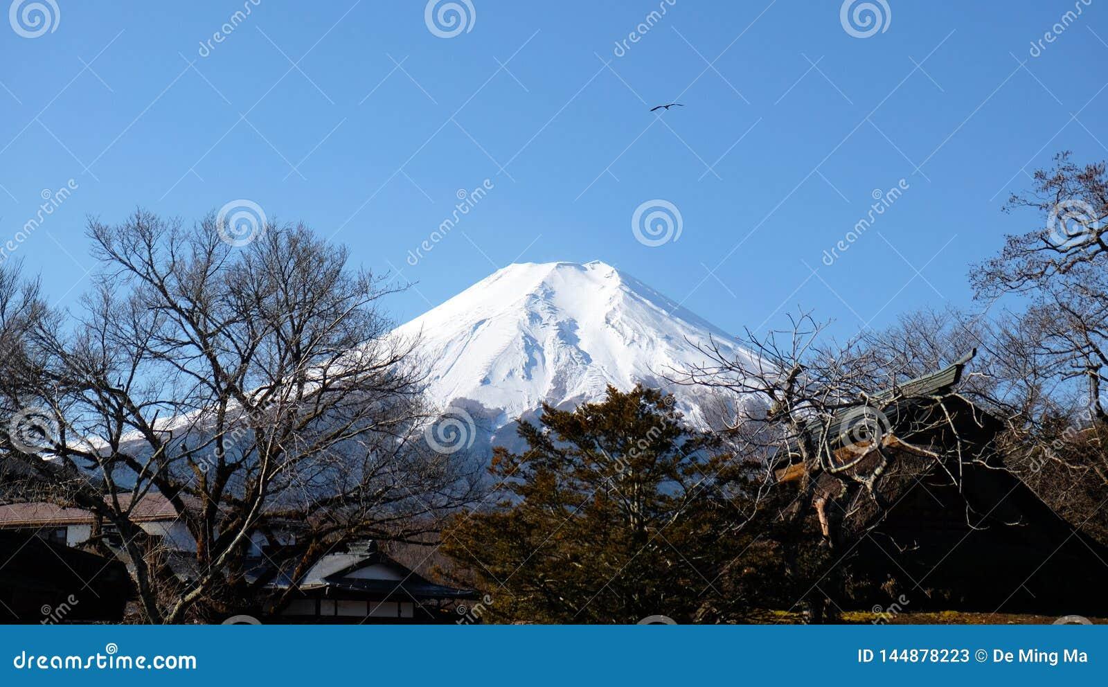 Montagem Fuji no inverno