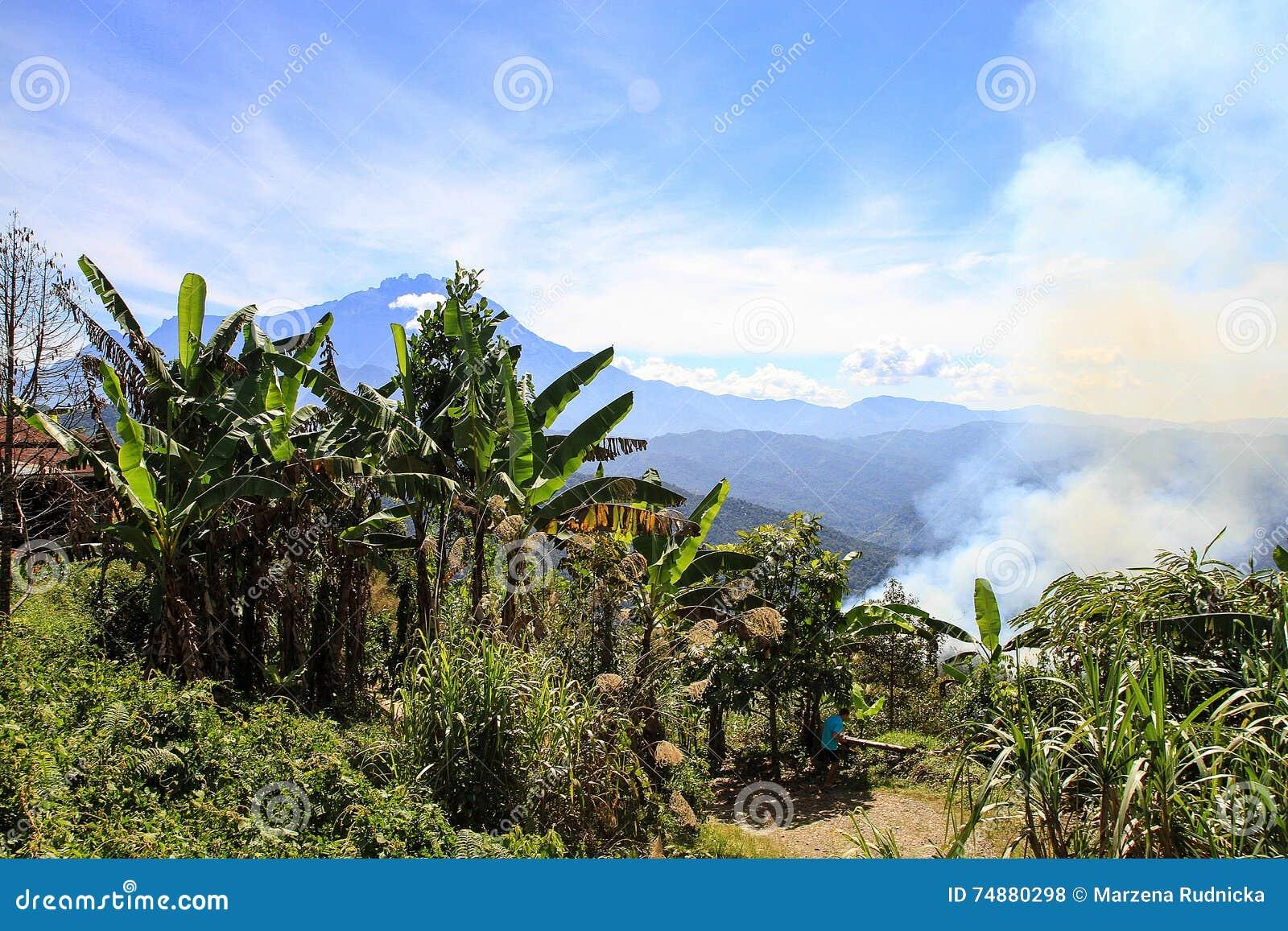 Montagem Kinabalu, Sabah, Malaysia, Bornéu