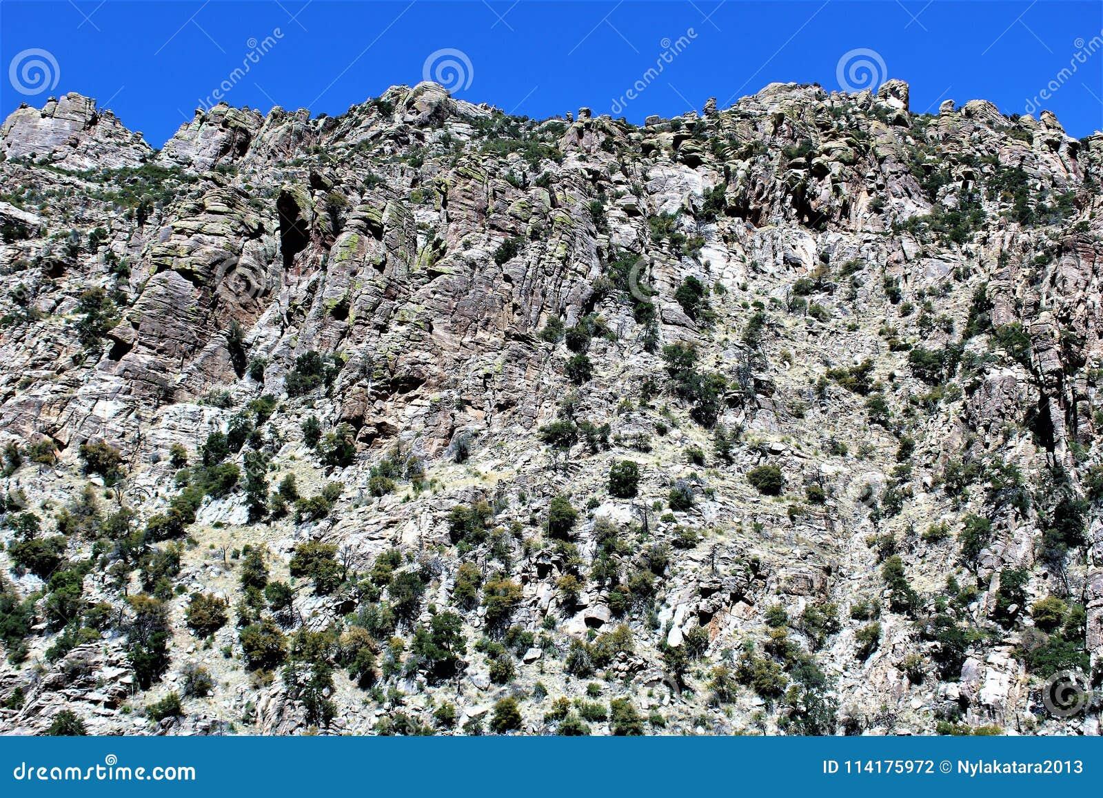 Montagem Lemmon, Tucson, o Arizona, Estados Unidos