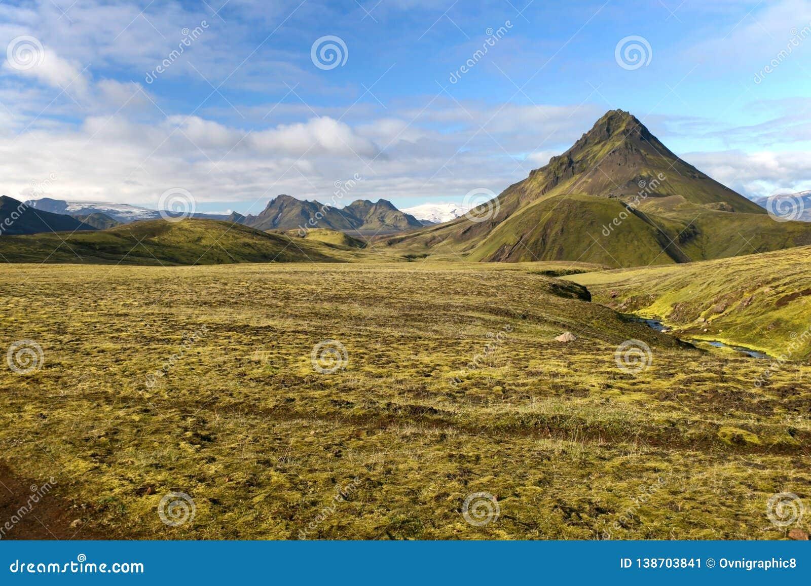 Montagna coperta da muschio verde nel parco nazionale di Landmannalaugar, Islanda
