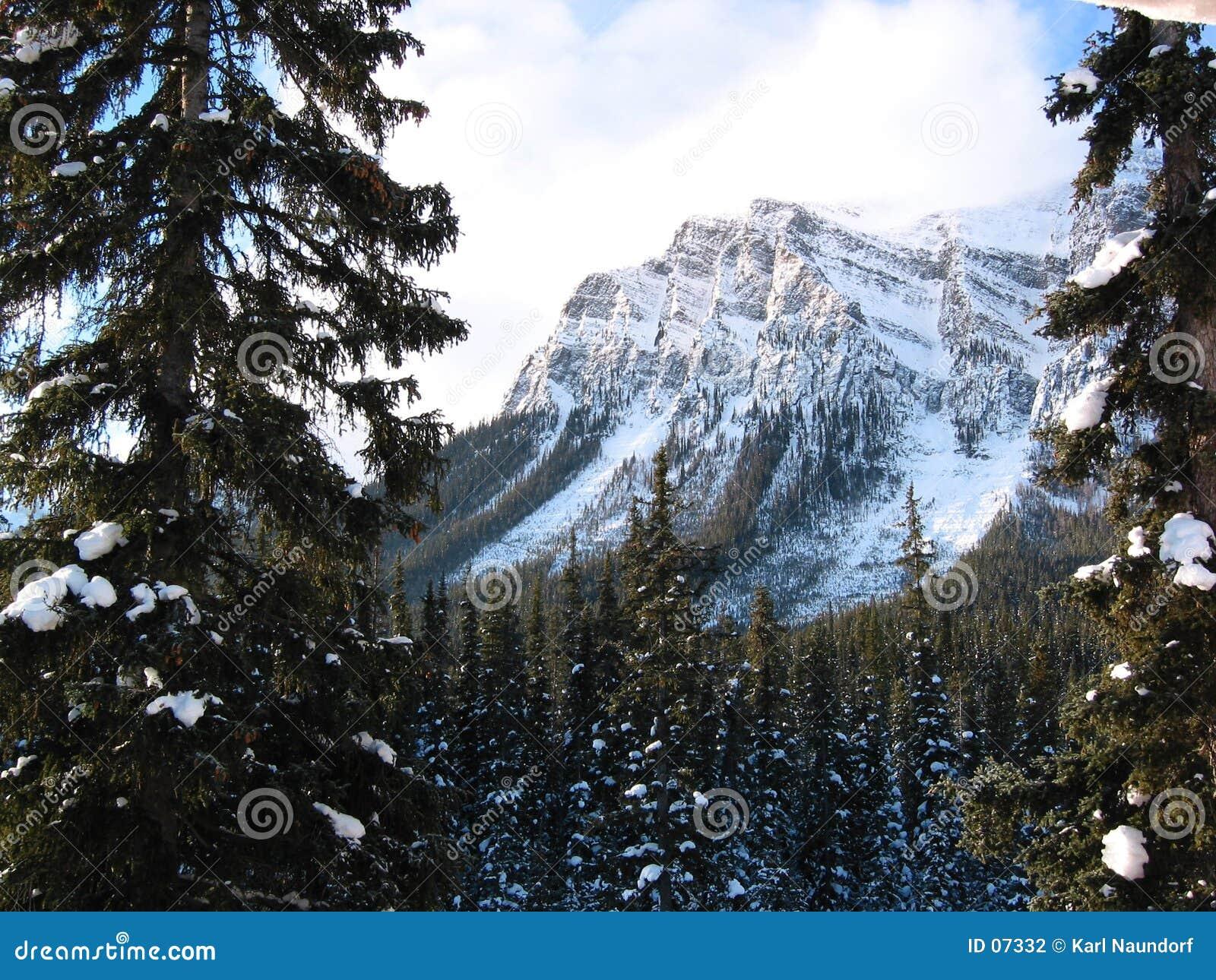 Montagna maestosa con una foresta nevosa