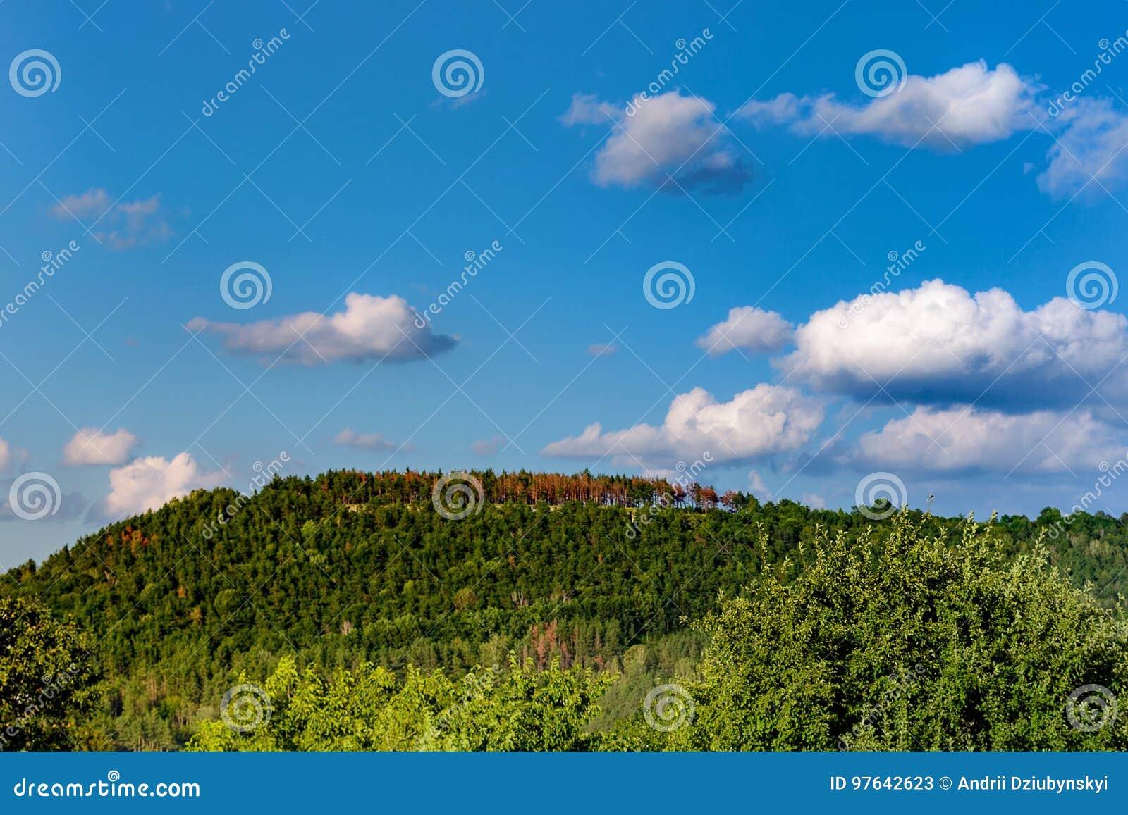 Montagne avec les arbres verts et rouges Ciel avec des nuages