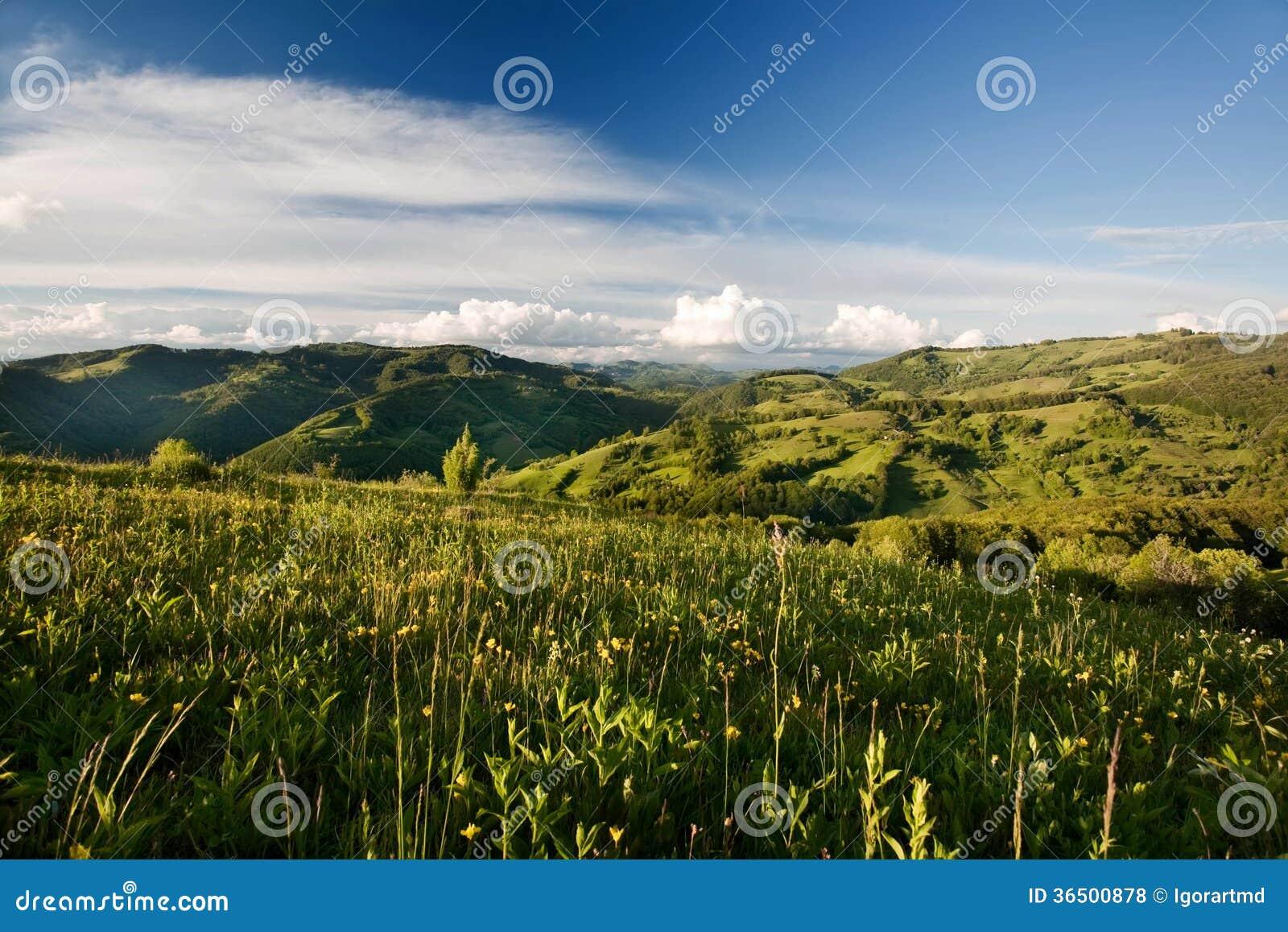 Montagne carpathienne