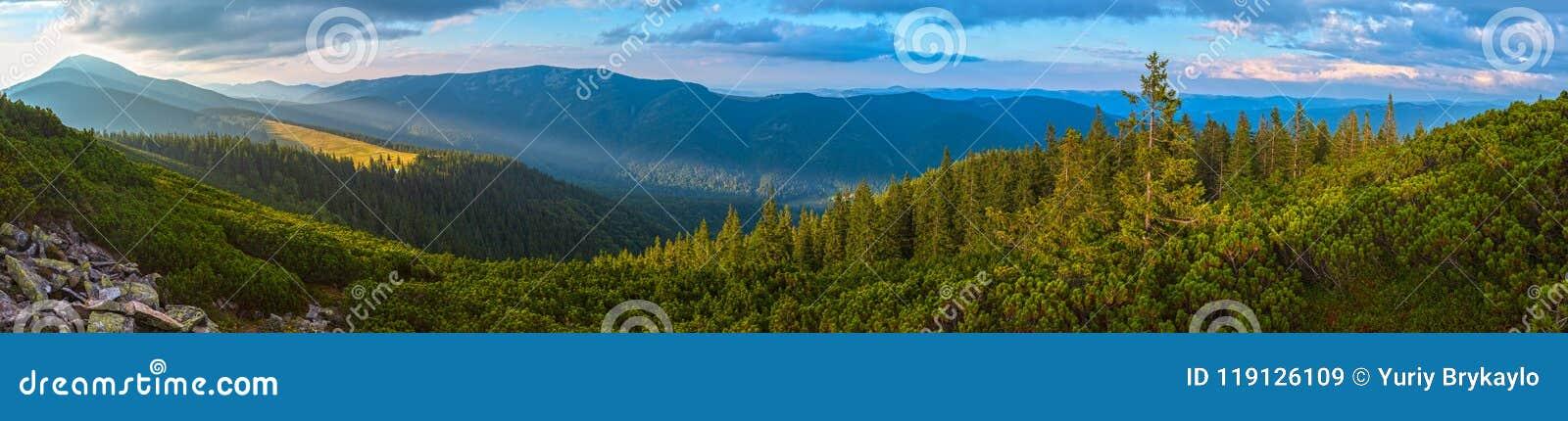Montagne carpathienne d été, Ukraine