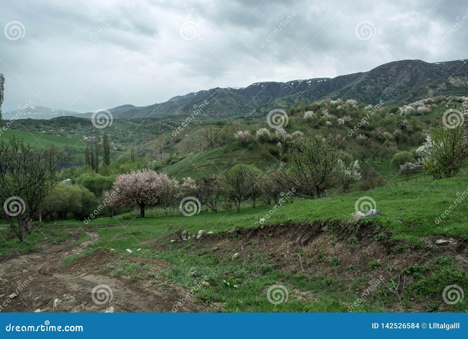 Montagne con le nuvole nella primavera Natura ?Tekeli ? Montagne di Alatau kazakhstan